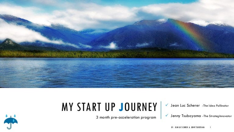 what is program in my startup