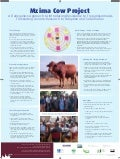 Mzima Cow Project: A transgenics approach to introducing resistance to trypanosomiasis translating tenetic research to adoption and social value