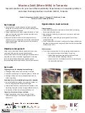 Towards solutions for year round feed availability—Experiences on Innovation platform and value chain approaches in Lushoto District, Tanzania