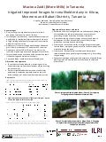 Irrigated Improved forages for smallholder dairy in Kilosa, Mvomero and Babati Districts, Tanzania