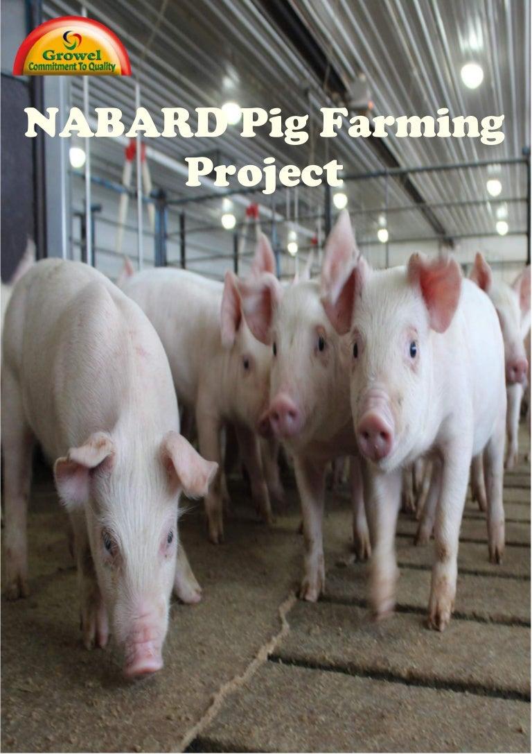 nabardpigfarmingproject 150228091418 conversion gate01 thumbnail 4 jpg cb u003d1475593942
