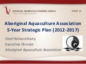 NAFF II - Panel industry case studies - AAA 5 year plan - Richard Harry