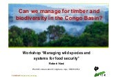 Can we manage for timber and biodiversity in the Congo Basin?