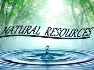 Image result for natural resources