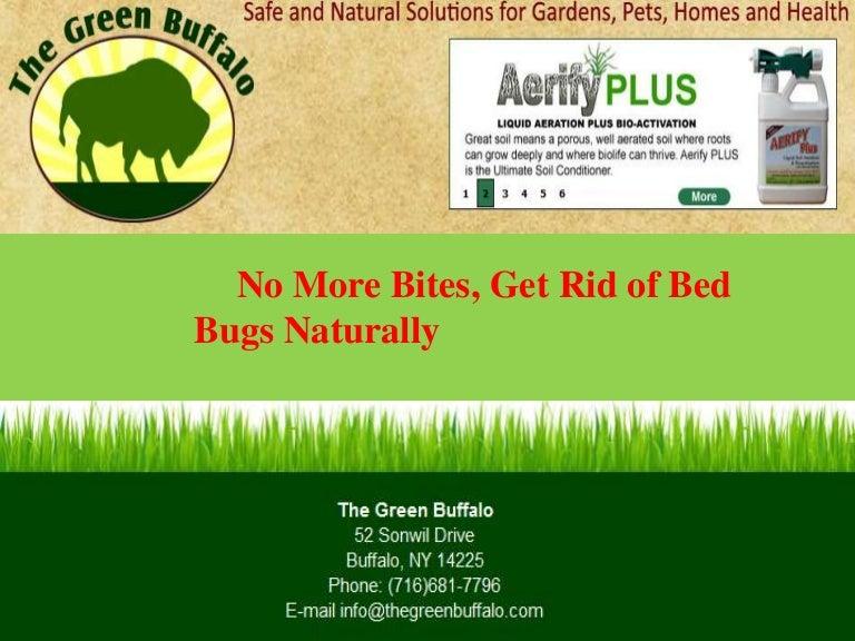 Natural bed bug spray