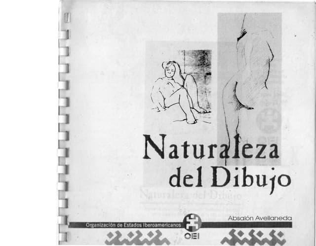 Naturaleza Del Dibujo