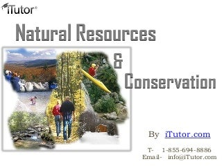 What is a good topic to write about in an essay about Conservation of Natural Resources?