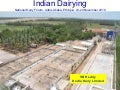 Indian Dairying