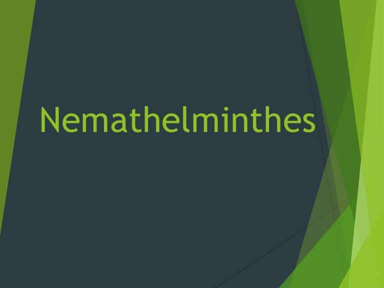 Nemathelminthes cacing ppt