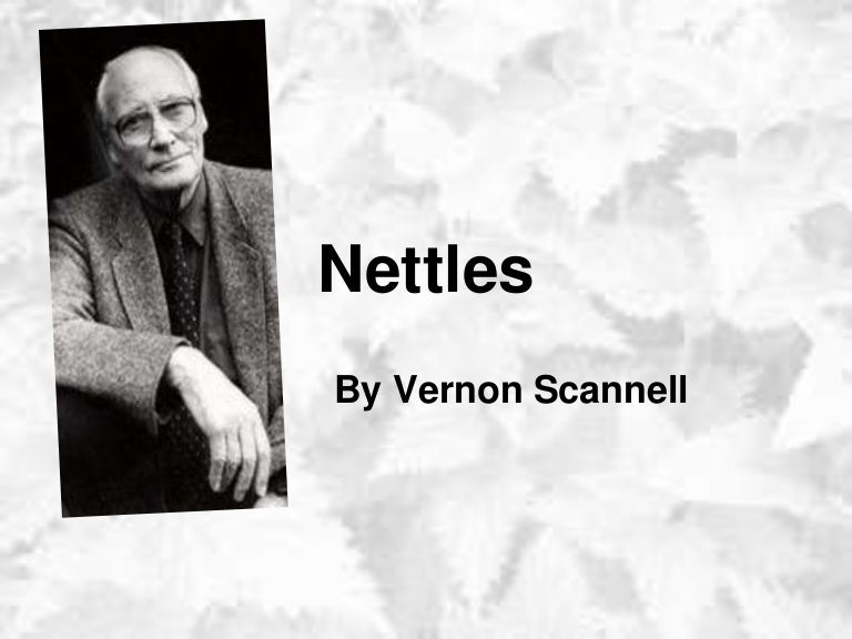 nettles by vernon scannell Close analysis of 'nettles' by vernon scannell discuss ideas linked to battles throughout childhood, zoom in on imagery and meaning and consider the poet's choice of language and structural features.