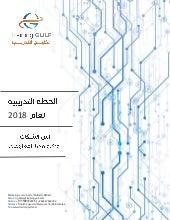 دورات أمن الشبكــات وتكنولوجيــا المعلومــات لعام 2018 || Network security and information technology Training Courses for 2018