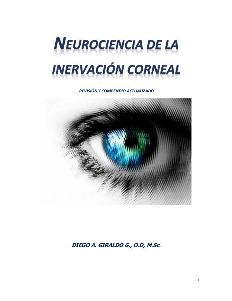 diagnóstico de distrofia retiniana de la barra cónica de diabetes