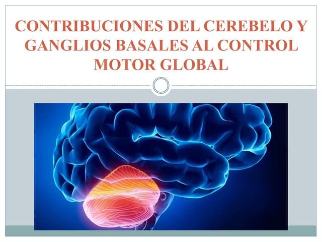 Neurofisiologia - cerebelo y ganglios basales