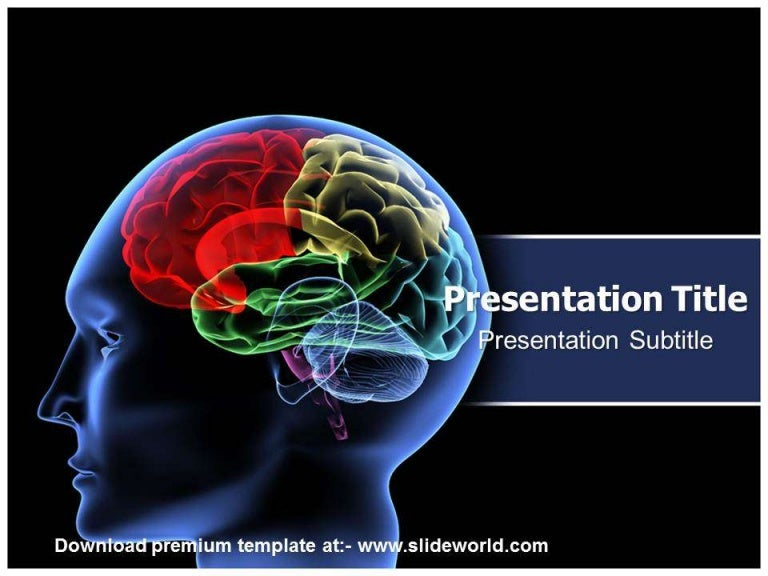 Neurology Powerpoint Template Slideworld