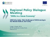 SME Policy Index: Main Challenges of SME Greening in the Western Balkans and Turkey
