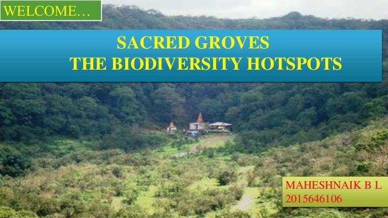 TOPIC: SACRED GROVES THE BIODIVERSITY HOTSPOTSpptx pdf