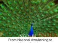 NGOs in India - From National Awakening to Nation Building