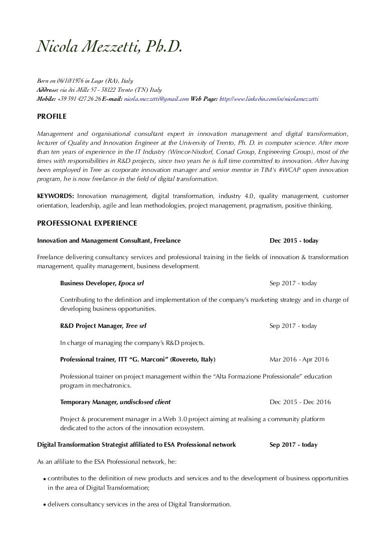 nicola mezzetti cv en pdf