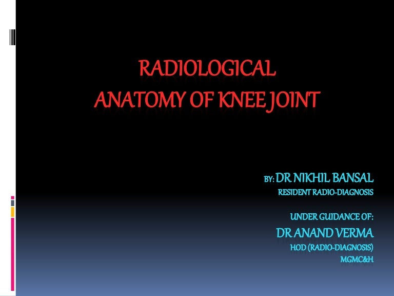 MRI KNEE JOINT ANATOMY