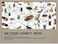 National Insect Week 2016
