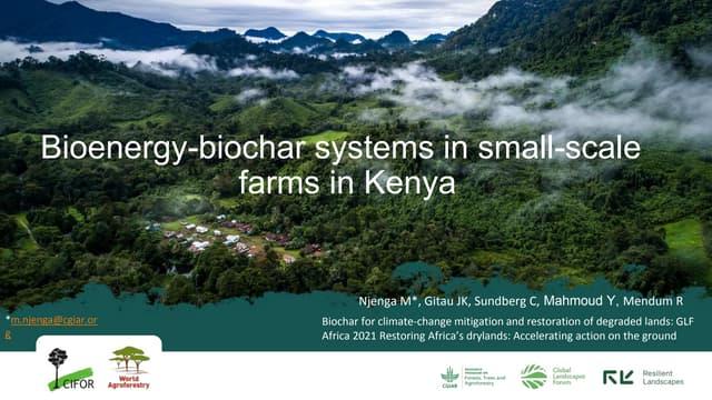 Bioenergy-Biochar Systems in Small-Scale Farms in Kenya
