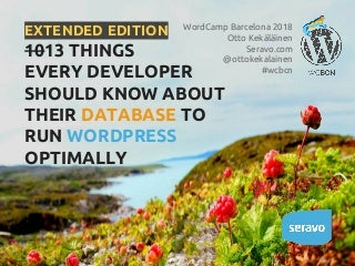 10 things every developer should know about their database to run word press optimally