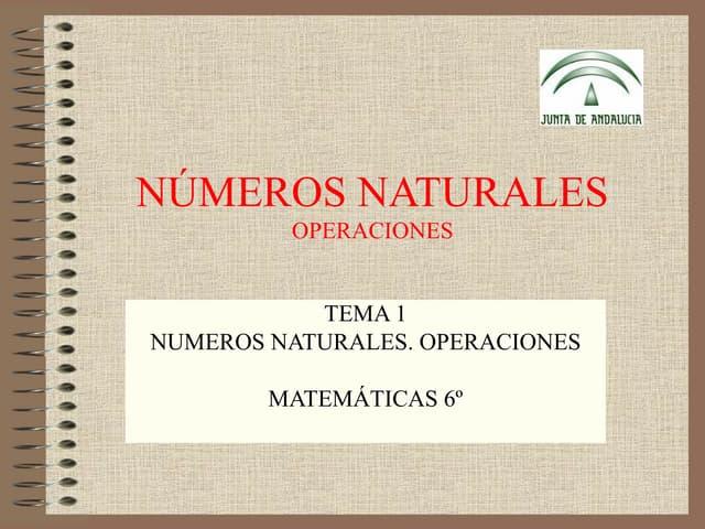 Nmerosnaturales operacionescombinadas-100904111748-phpapp02