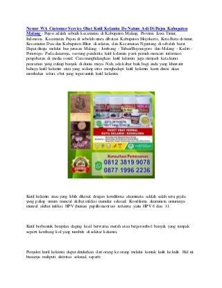 Nomor wa customer service obat kutil kelamin de nature asli di pujon kabupaten malang