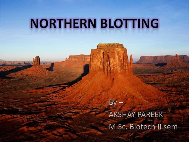 Northern blotting