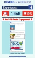 NPIN By The Numbers 2014: Facebook