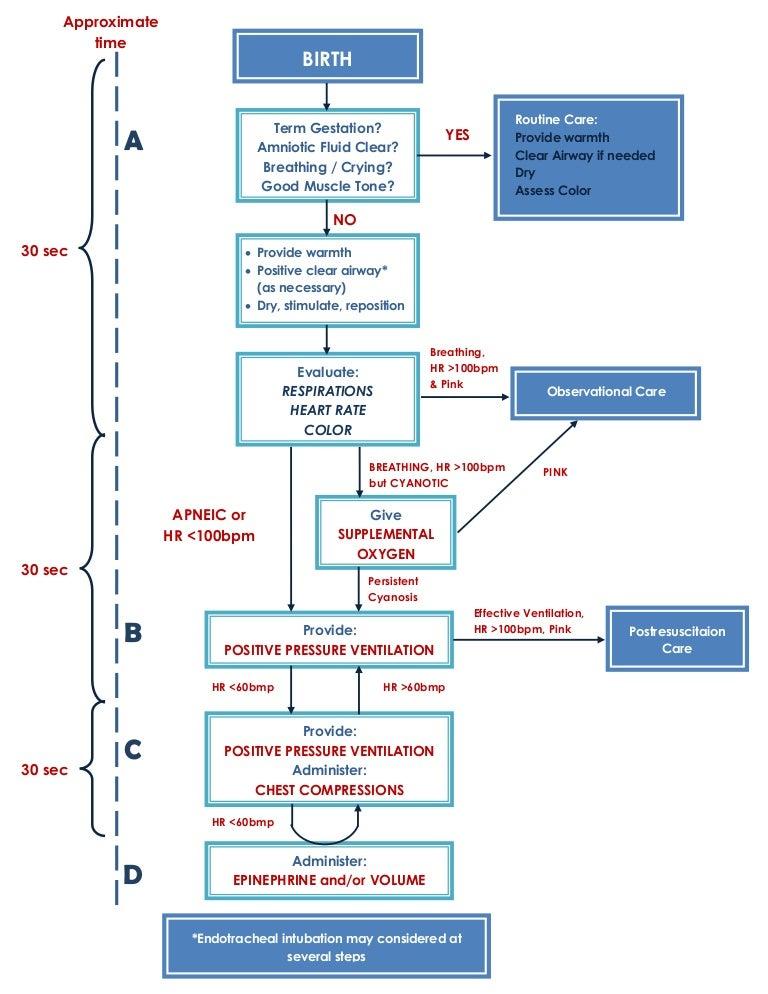 neonatal resuscitation program diagram rh slideshare net nrp guidelines 2018 document nrp guidelines 2015