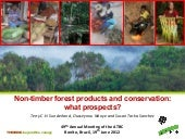 Non-timber forest products and conservation: what prospects?