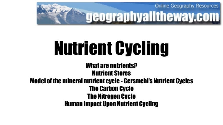 Ib geography ecosystems nutrient cycling ccuart Gallery