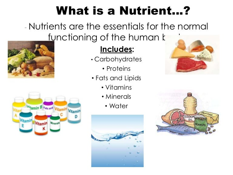 a report on the six groups of nutrients water carbohydrates fats proteins minerals and vitamins There are six essential nutrients: carbohydrates, fats, proteins, vitamins, minerals and water the six essential nutrients  proteins vitamins minerals water.
