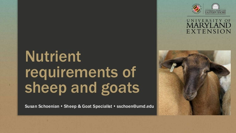 Nutrient requirements of sheep and goats