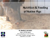 Nutrition and feeding of native pig