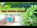 Nutrition in animals class vii