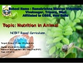 Nutrition in animals class vii