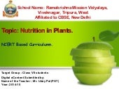 Nutrition in plants, Class- VII, NCERT Based