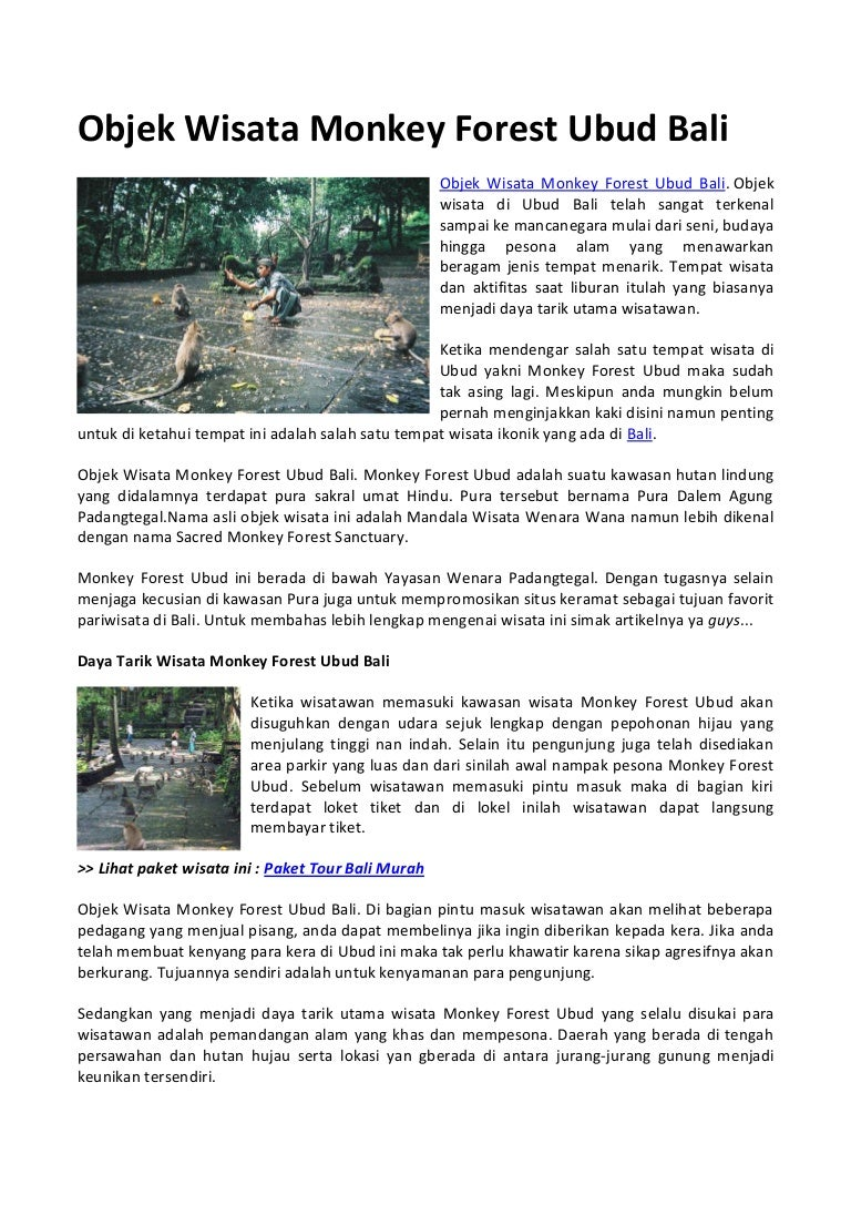 Objek Wisata Monkey Forest Ubud Bali