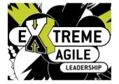 Extreme agile leadership