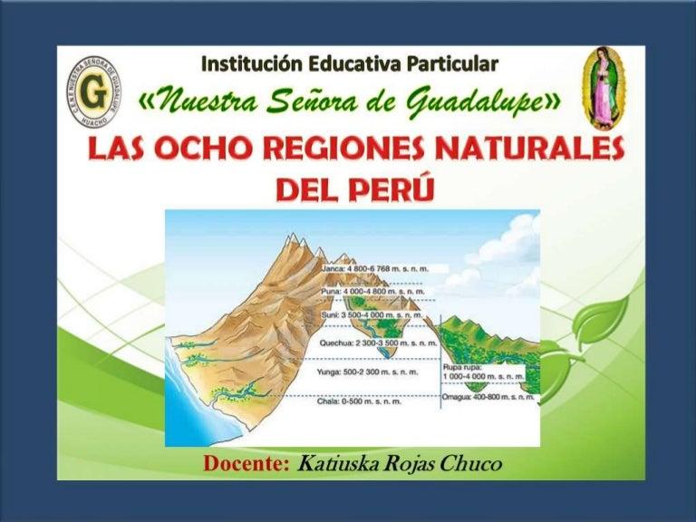 Ocho regiones naturales - Ambientadores naturales para la casa ...