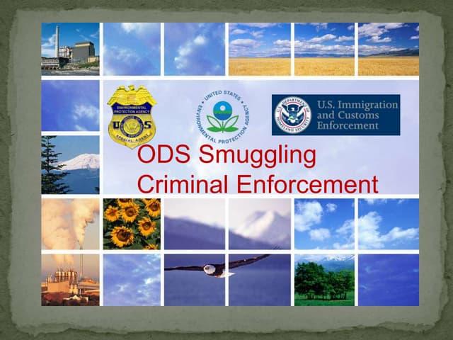 ODS smuggling criminal enforcement