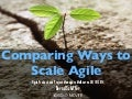 Comparing Ways to Scale Agile at Agile Product and Project Manager Meetup