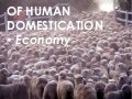 Of human domestication: economy
