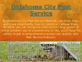 Oklahoma City Pest Treatment