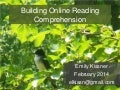Building Online Reading Comprehension