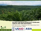 Oil palm and Green Economy in Indonesia: lessons from East Kalimantan
