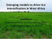 Th5_Emerging models to drive rice intensification in West Africa