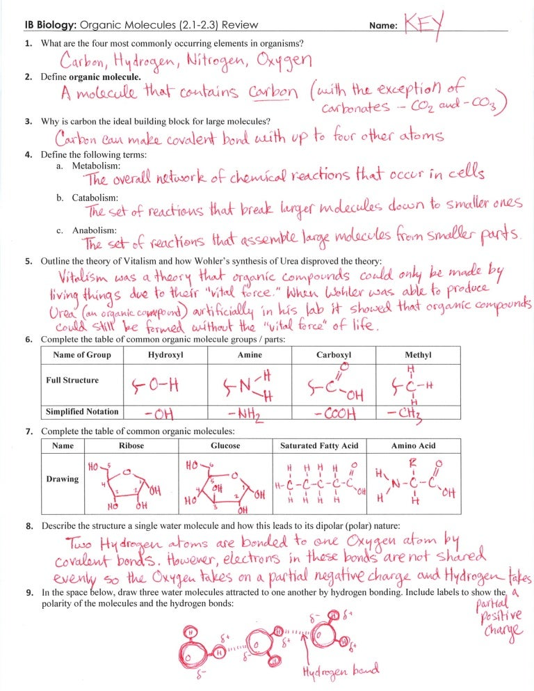 IB Organic Molecules Review Key 2123 – Polarity of Molecules Worksheet